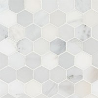 Arabescato Carrara 2X2 Hexagon Honed Mosaic