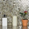 Champagne Hexagon 1x1 Collection Mosaic